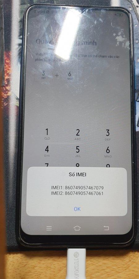 y11 1.jpg
